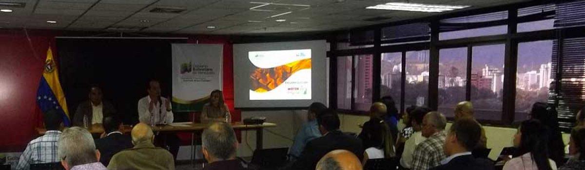 Gobierno Bolivariano promueve fortalecimiento del sector minero mediante conjunción de esfuerzos