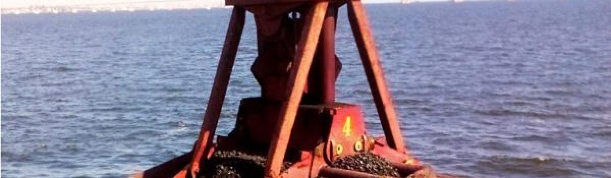 Zarpó a Europa buque con 44 mil toneladas de carbón venezolano