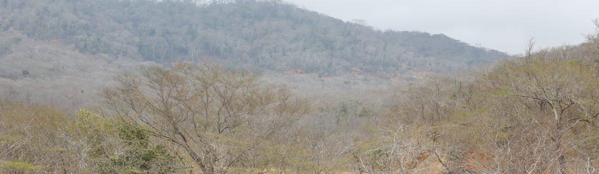 Producción carbonífera en Fila Maestra se realizará bajo estrictos controles ambientales