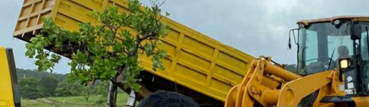 Autoridades del Motor Minero inspeccionaron Escuela Agrominera El Callao